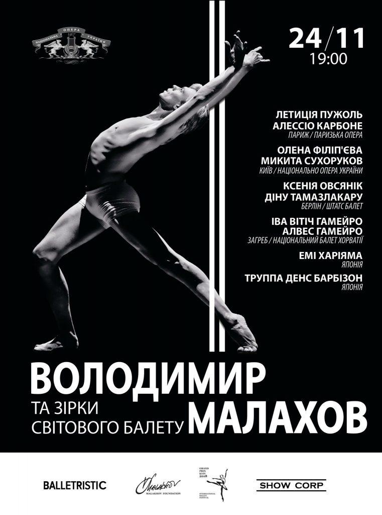 島崎徹ウラジミール マラーホフと世界のバレエスターガラ公演